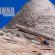 Holtanna – escalada de grandes paredes y base saltando en la Antártida